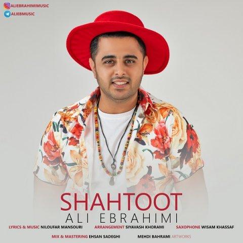دانلود آهنگ جدید علی ابراهیمی به نام شاه توت