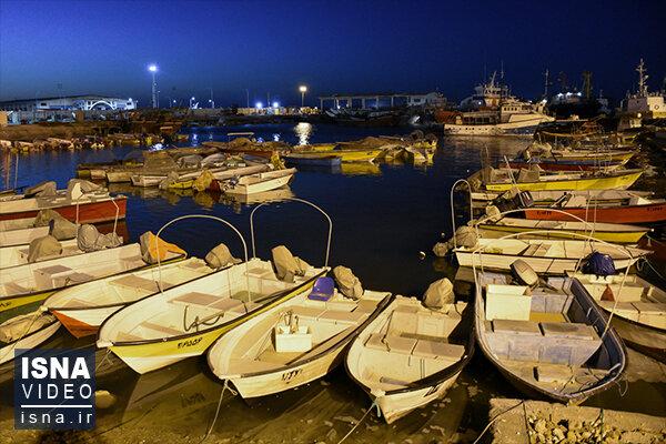 گشتی در سواحل بوشهر، در روز خلیج فارس